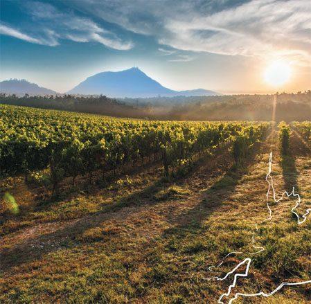 31e édition du Concours Départemental des vins