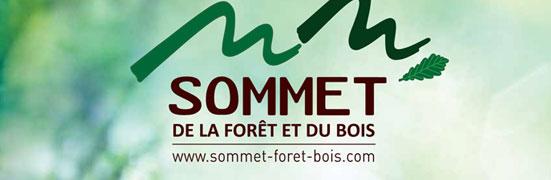 Le sommet de la forêt et du bois: LE rendez-vous des professionnels de la filière forestière!