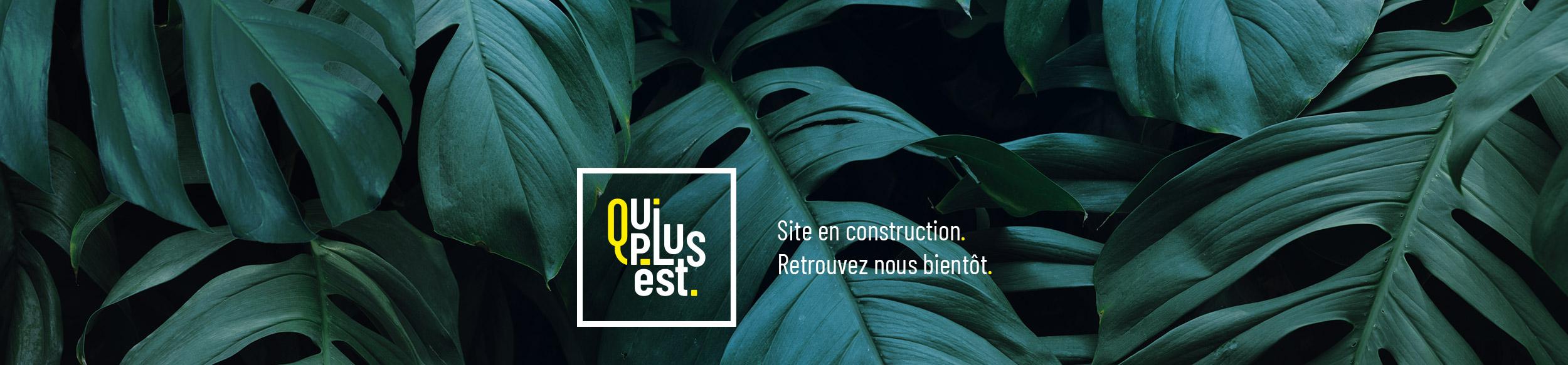 Nouveau site web 2020